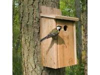 Conservation Day - Building Nest Boxes