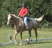 Riding Lessons with certified coach