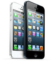 iPhone 5 screen replacement - Black or White - $79