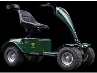 Single Seat Electric Golf Buggy
