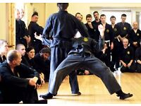 Ninjutsu classes in Yate Leisure Centre