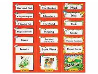 Jolly Phonics DVD and Jolly Readers : Pack of 18 Books