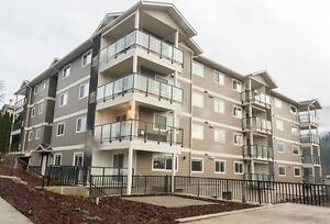 Region's Best New Apartment Complex