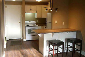 Nicely Updated Condo - Excellent Investment Property