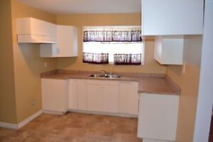 2 Bed, 1 Bath main floor apartment close to downtown