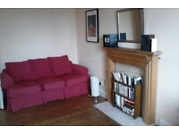 2 months only (June & July) - spacious 1 bedroom flat in central Edinburgh