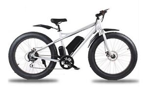 Fat Tire Electric Bicycle for sale