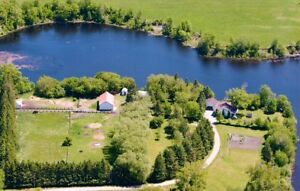 Horse Farm and Home in Lake of the Woods area