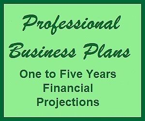 Business Plans and Financial Projections