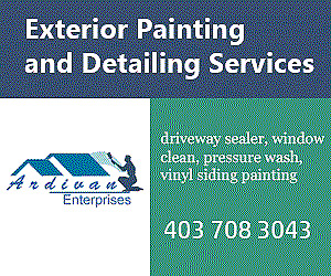 Exterior Painting and Detailing Services