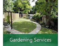 Professional & Affordable Gardening Maintenance Service / Window Cleaning Service