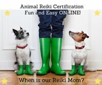 Animal Reiki Practitioner Certification Program Online