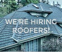 WE'RE HIRING SHINGLE ROOFERS