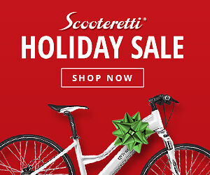 FLASH HOLIDAY SALE - ELECTRIC BIKES - FREE SHIPPING & ASSEMBLY