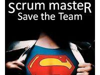 Digital Analyst Web Manager Scrum
