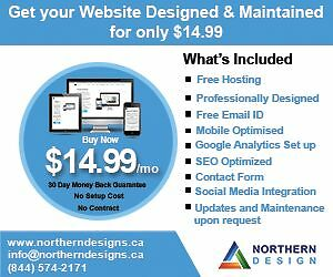 Website Hosting, Design and Support only $14.99 Sarnia Sarnia Area image 1