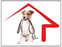 HOUSE SITTER – PET SITTER – DOG WALKER