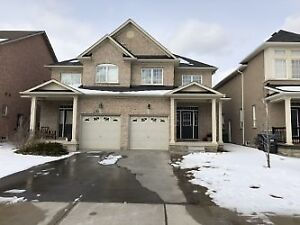 3 bedroom semi detached Bramalea/Father Tobin, Call Now !