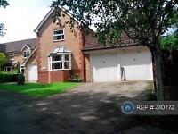 4 bedroom house in Rievaulx Close, Knaresborough, HG5 (4 bed)