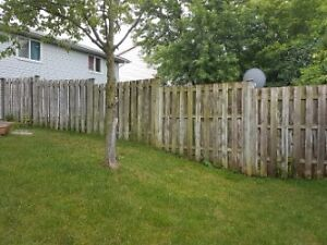 Fence Panels/Gate for Sale!!