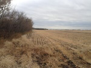 STURGEON COUNTY LAND
