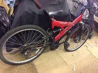 AXE Pagan Bicycle