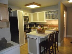 2 bdrm Condo All Inclusive avail Apr 1st 1 MNTH FREE RNT Kitchener / Waterloo Kitchener Area image 2