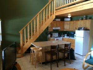 Furnished 2 bedroom codo w loft at Apex. Power/ wifi included