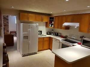 Fully Furnished 3-Bedroom Basement Suite & Utilities $3500/month