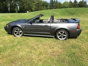 2004 Ford Mustang Cabriolet