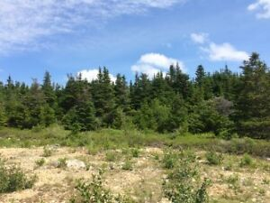 Huge Parcel of Land in Bryant's Cove,Nl
