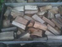 Seasoned hardwood log's