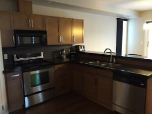 Luxury1500sqft Edmonton Downtown Condo and parking space