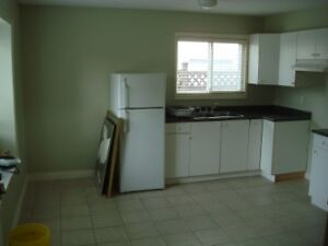 HIGH GATE MALL 1 BEDROOM BASEMENT SUITE!
