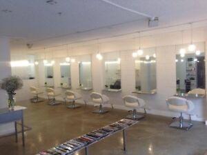 Prestigious South Yarra hair salon business for sale South Yarra Stonnington Area Preview