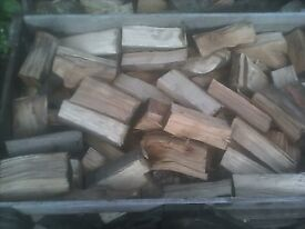 Fire wood Log's