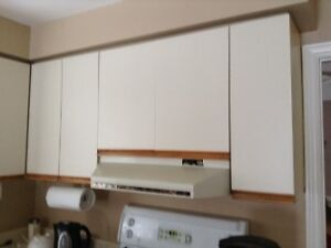 Kitchen Cabinet Doors Used with chrome hinges
