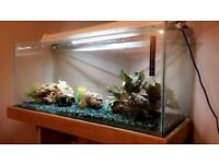 Fish Tank Aquarium 3ft with matching cabinet and shelving, LED lighting