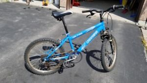 Blue Carrera kid`s bike (used)