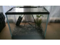 Ready to go all inclusive mini fish tank (approx 30cm x 30cm)