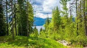 Lot 325 Aspen Road, Anglemont- LAKE VIEW 0.26 Acre Building Lot