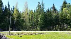 4978 Meadow Creek Road, Celista - 1.6 acre lot