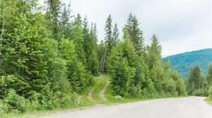 109 Dolly Varden Road, Enderby - Spectacular View Lot