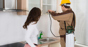High Quality Pest Control Servicing Business with Great Sales Gr
