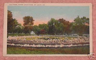 Lily Pond  Tower Grove Park  St  Louis  Missouri