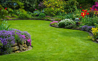 Cheapest yard care, gardening, landscaping in town 250-802-2929