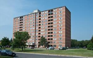 1 bedroom apartment for rent MINUTES to Downtown! Peterborough Peterborough Area image 12