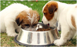 Specialty Animal Food Manufacturer and Retailer