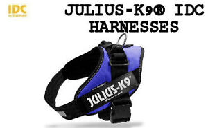 Dog Harnesses - Easy to fit and adjustable harnesses - Julius K9 Downtown-West End Greater Vancouver Area image 8