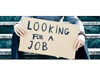 I am looking for a job.